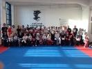 Semi samling, Kolding kickboxing – jan. 2015_1